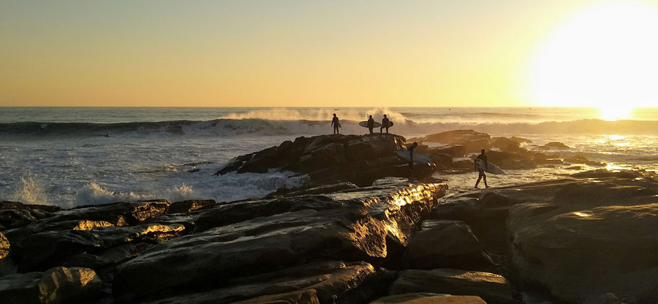 A group of surfers in the sunset