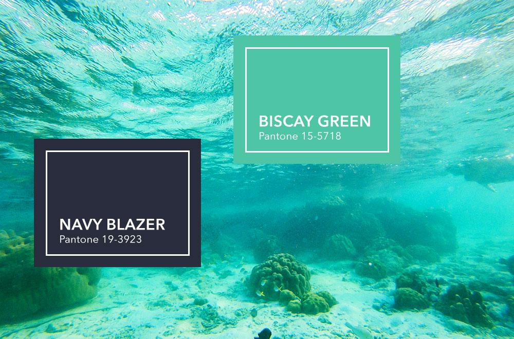 Unterwasserwelt mit Farbkacheln im Vordergrund: Navy Blazer und Biscay Green