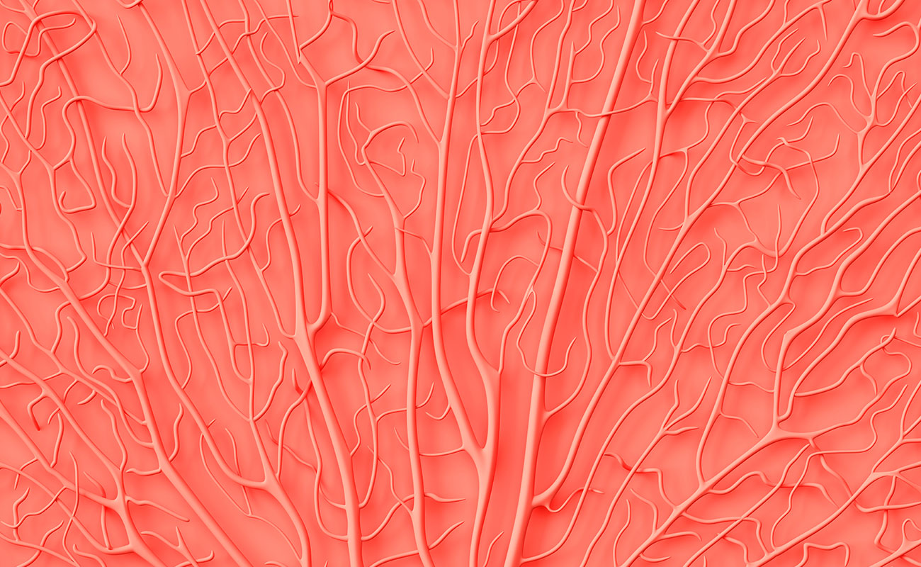Farbfläche Living Coral mit Korallenstruktur