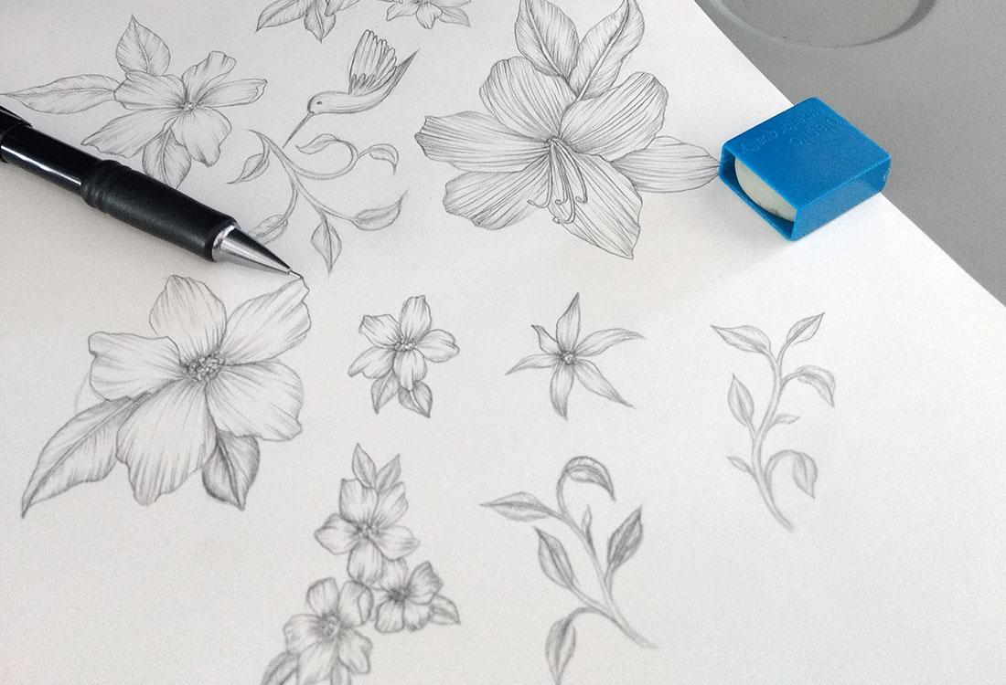 [Translate to Englisch:] Papier auf dem Bleistift und Radiergummi liegen mit Bleistiftzeichnung Blüten, Pflanzen und Kolibri,